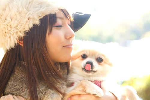 yuuigi_pet