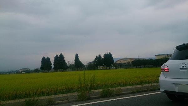 野沢北高校